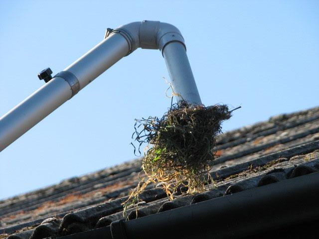 Nettoyage de gouttières Rive-Sud